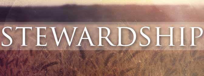 stewardship1-672x250